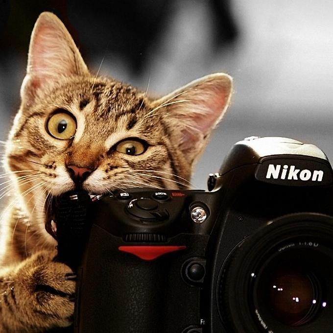 Kompaktní fotoaparát pro Šonováčky