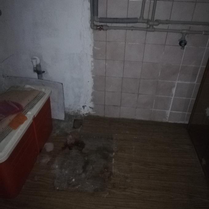 Kočičí pokoj