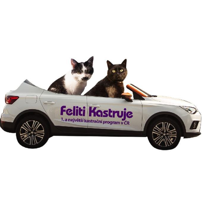 Auto pro kočky