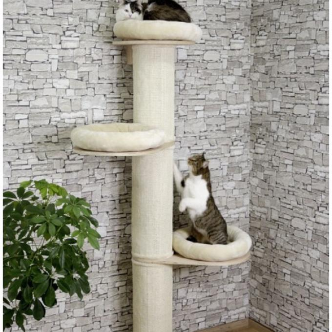 Kočičí strom Dolomit Tower