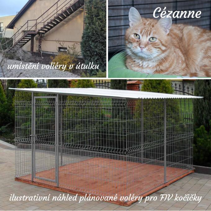 Izolovaný výběh pro FIV pozitivní kočičky
