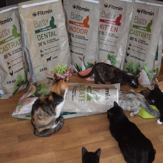Krmení pro citlivé kočičí kožíšky
