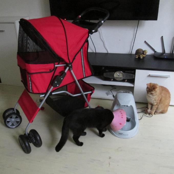 Kočárek na těžké kočky a fontánka