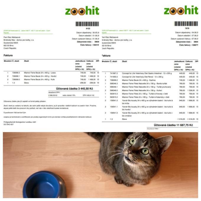 Prosba kočiček od Maxe o kvalitní krmivo