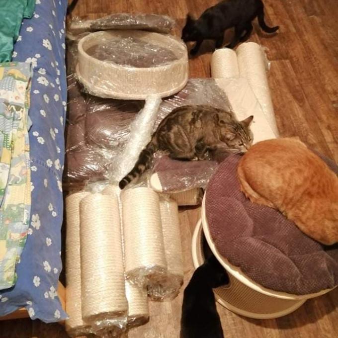 Škrabadlo pro Kočičí dům u Mourečka