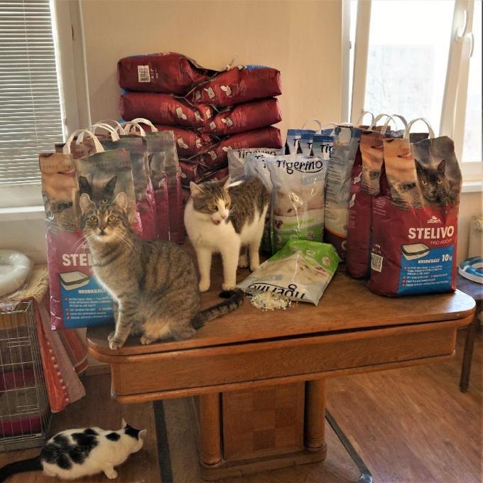 Stelivo pro kočičky u Fredíka