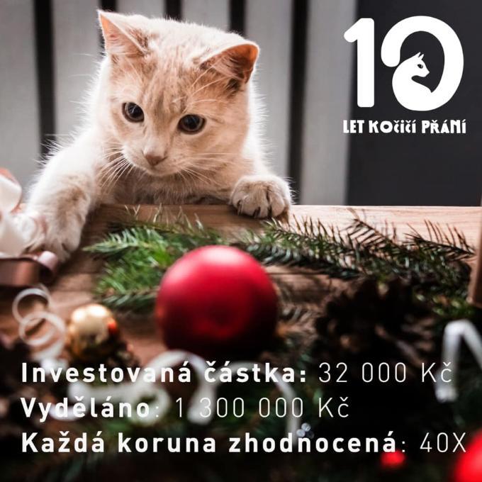 Reklama pro příští vánoční Kočičí přání