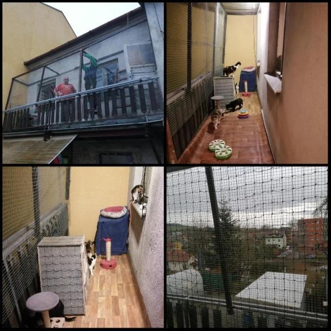 Zasíťování oken a balkonu pro Kočičí dům u Mourečka